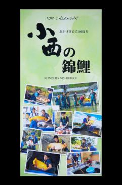 Koi Kalender 2019 - kostenlos*
